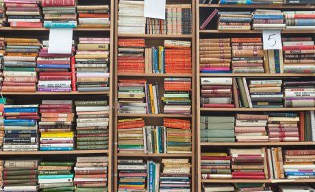Übersicht: Durch Links mehr Geld mit eigenen Büchern verdienen