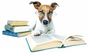 Dog_Books